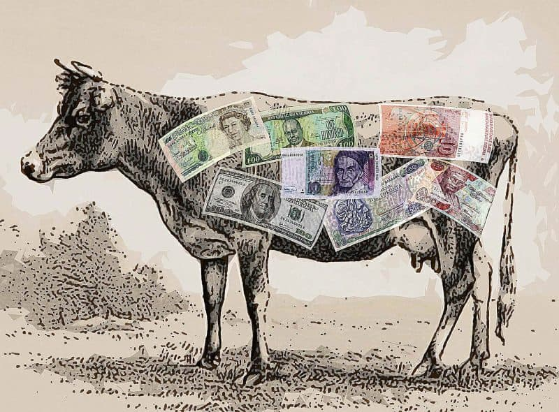 SSL Certificates have been a cash cow for years.